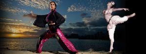 BAnner FB Workshops 2014-wushu ballet