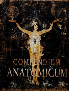 Compendium Anatomicum